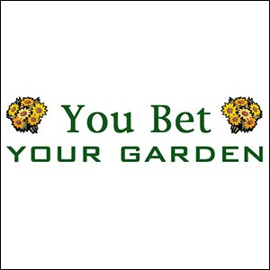 You Bet Your Garden, for the Hungry, December 14, 2006 - Various Artists