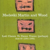 Medeski Martin & Wood - The Lover