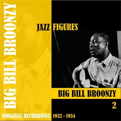 Jazz Figures: Big Bill Broonzy, Vol. 2 (1932-1934) - Big Bill Broonzy