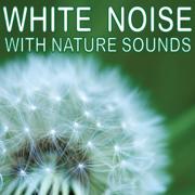 White Noise With Nature Sounds - White Noise - White Noise