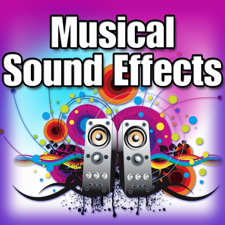 Cabassa: Rhythmic Shakes