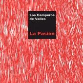 Los Camperos de Valles - El Fandanguito