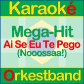 Ai Se Eu Te Pego! (Nooossaa!) – Karaoke - In Style of Michel Teló (Karaoké)