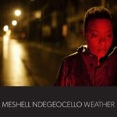 Meshell Ndegeocello - Don't Take My Kindness for Weakness