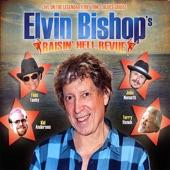 Elvin Bishop - Down In Virginia