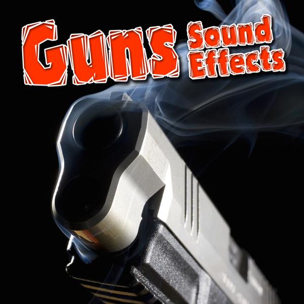 Guns Sound Effects by Dr  Sound FX