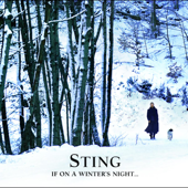 If On A Winter's Night... (Bonus Track Version)-Sting