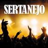 Sertanejo - Vários intérpretes
