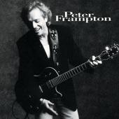 Peter Frampton - Shelter Through The Night (Album Version)