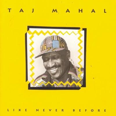 Like Never Before - Taj Mahal
