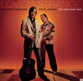 Jackson Browne & David Lindley - Call It A Loan