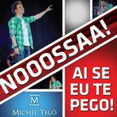 Ai Se Eu Te Pego (Ao Vivo) [Live]