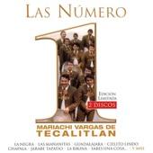 Mariachi Vargas de Tecalitlán - Guadalajara