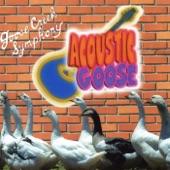Goose Creek Symphony - Rush On Love
