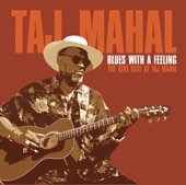 Taj Mahal - Take a Giant Step