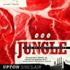 Upton Sinclair - The Jungle (Unabridged)  artwork