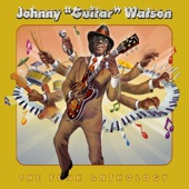"Johnny ""Guitar"" Watson - Ain't That A Bitch"