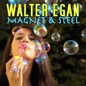Walter Egan - Magnet & Steel