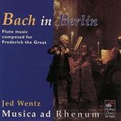 Jed Wentz, Musica ad Rhenum - Quartet in D major for 2 traversi, viola & basso continuo: Affettuoso, Allegretto, Vivace