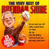 The Very Best of Brendan Shine
