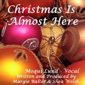 Carly Simon - The Night Before Christmas
