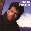 David Foster - Who's Gonna Love You Tonight artwork