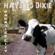 Paradise City - Hayseed Dixie