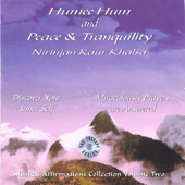 Musical Affirmations Collection Vol. 2