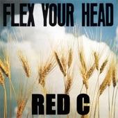 Red C - 6 O'Clock News