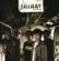 Destination XYZ - Callalily