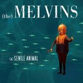 Melvins - A History of Bad Men