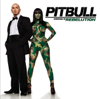 Pitbull - Hotel Room Service artwork