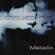 Donny McCaslin, Matthias Lupri Group & Myron Walden - Metalix