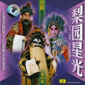 Famous Opera Artists, Vol. 4 (Li Yuan Xing Guang Di Si Ji)