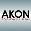 Akon - Right Now (Na Na Na) artwork