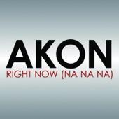 Right Now (Na Na Na) - Single