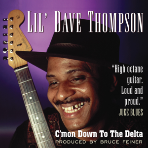 Lil' Dave Thompson - C'mon Down to the Delta