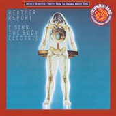 Weather Report - Unknown Soldier