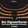 Der Zigeunerbaron - The Vienna Operetten Orchestra & The Vienna Operetten Choir