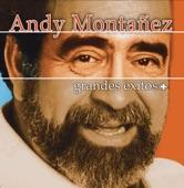 ME LO ESTAS PONIENDO DIFICIL - ANDY MONTANEZ