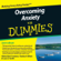 Elaine Iljon Foreman, Charles H. Elliott & Laura L. Smith - Overcoming Anxiety For Dummies Audiobook
