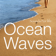 Ocean Waves 1 - Sounds for Life - Sounds for Life