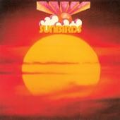 Sunbirds - Sunrise