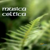 Musica Celtica, Musica Celtica Irlandese con Arpa Celtica