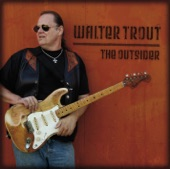 Turn Your Eyes To Heaven - Walter Trout