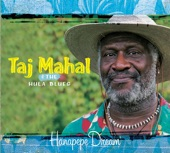 Taj Mahal - All Along the Watchtower