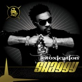 Shaggy - All About Love