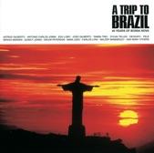 Walter Wanderley - Summer Samba (Samba De Verao)