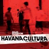 Gilles Peterson's Havana Cultura Band - Rezando