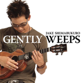 While My Guitar Gently Weeps -Solo-